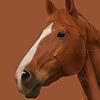 colaayee's avatar
