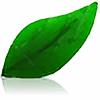 ColonelEgz's avatar
