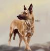 Colt-Lastshot's avatar