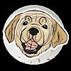 ColtonBreeds's avatar