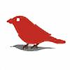 conniewood's avatar