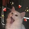 CoralCascade's avatar