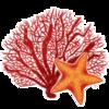 Coralstar51199's avatar