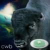 CosmicWaffleBison's avatar