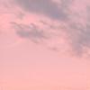 cosuffeeshi's avatar