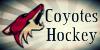 CoyotesHockey's avatar