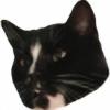 Crazyguy14's avatar