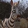 CrazyHejo1996's avatar