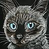 CreativeDomain's avatar