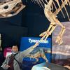 CreatorOfFriendship's avatar