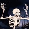 CreepyChippy's avatar