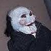 Creezble's avatar