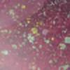 Crinklez's avatar