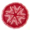 CrochetPainted's avatar