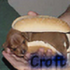 Croft70's avatar