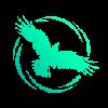 CrowCurio's avatar