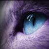 CTSael's avatar