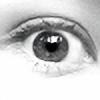 cubiccow's avatar