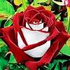 CupidsDaughter97's avatar