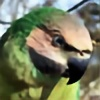 curious-lil-soul's avatar