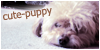 Cute-puppy's avatar