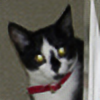 cute-tiger's avatar