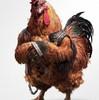 cvetan78vs's avatar