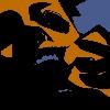 cvrkn's avatar