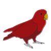 Cweena's avatar