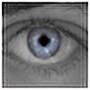 cx2k5's avatar