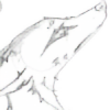 Cyodee's avatar