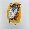 cypressbeans's avatar