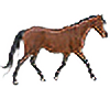 d-aigua's avatar