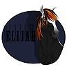 DaAmanda's avatar