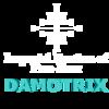 Damotrix's avatar