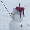 DampBritches's avatar