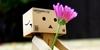 Danbo-Fans's avatar