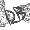 DaniBeez's avatar