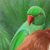 DanicaSto's avatar