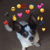 Danny17Xd's avatar