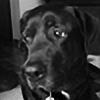dansquatch's avatar