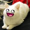 Dantedesertfox's avatar