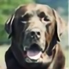 Dappolo's avatar