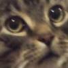 Daripo's avatar