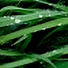 dariuszwozniak's avatar