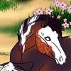 Dark-Bakura1's avatar
