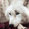 DarkCynder64's avatar
