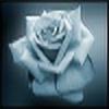darkhippie's avatar