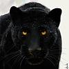 Darkslayer2010's avatar