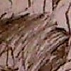 DarkSlayerSmith's avatar